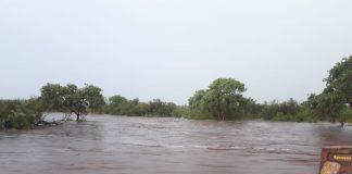 kruger park rains