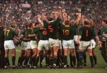 south african expat why i love the springboks