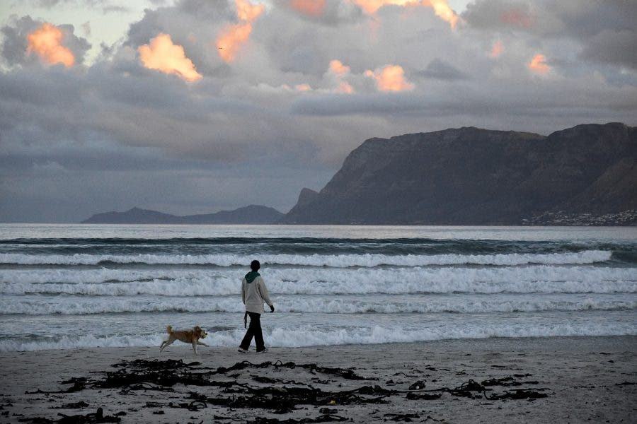 kitesurfer rescued muizenberg beach attack