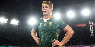 Pieter-Steph du Toit Springboks player of the year