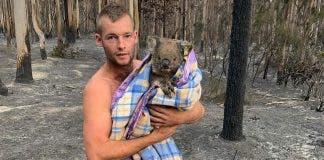 australian hunter patrick-boyle-rescue-koalas-australiapatrick-boyle-rescue-koalas-australia