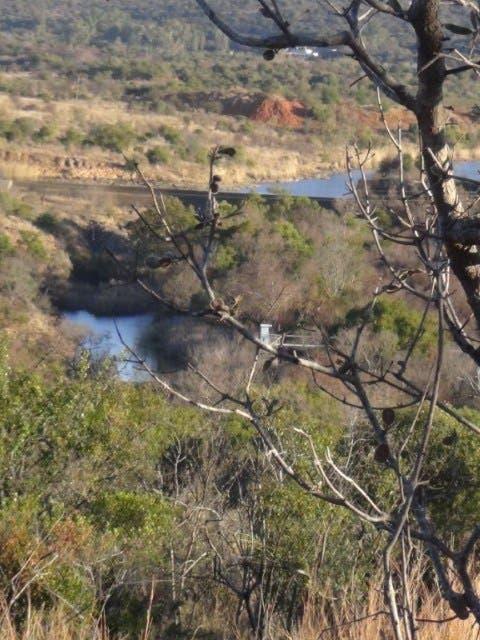 river girl bitten by crocodile south africa elands river