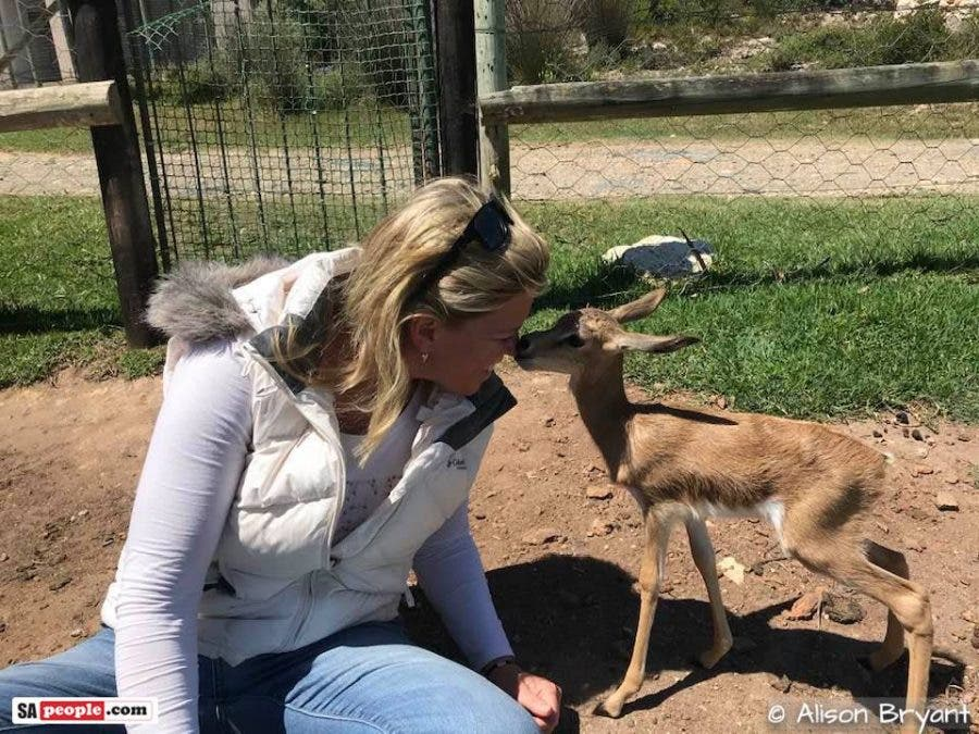 stilbaai farmer nurses baby springbok
