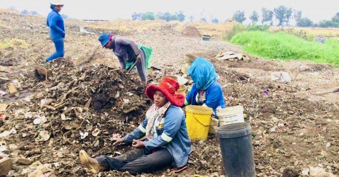 women work metal dump south africa