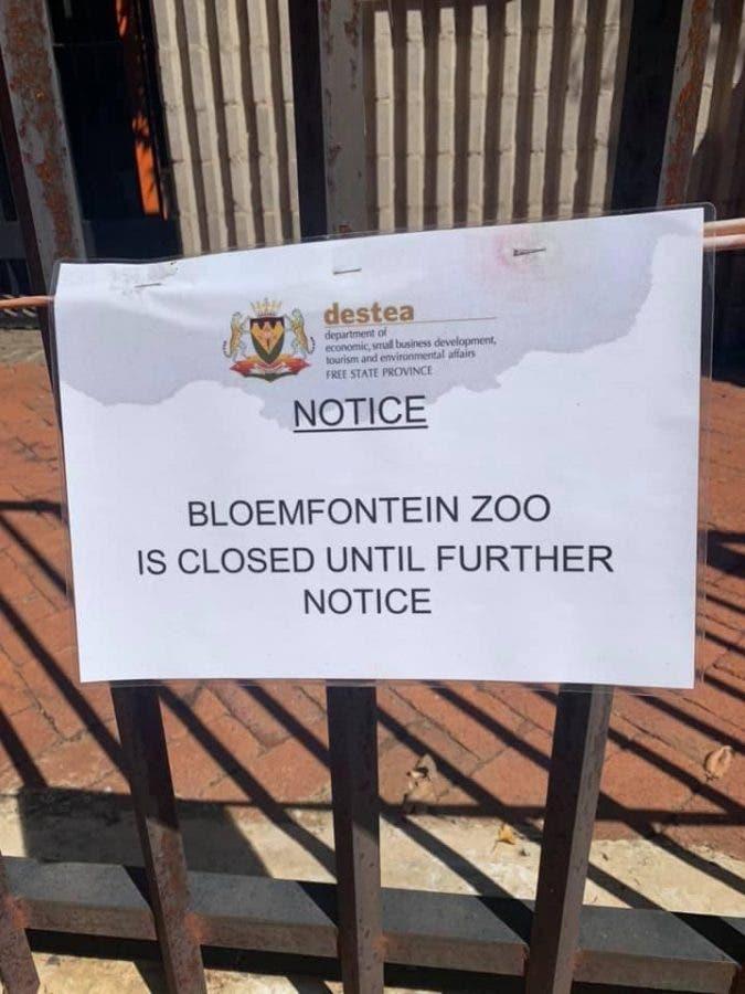 bloemfontein zoo closed animals abused