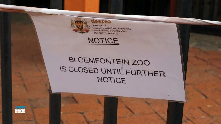 bloemfontein zoo closed south africa
