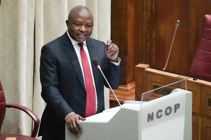 deputy president land grabs south africa