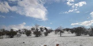 Kalahari Desert ice