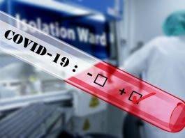 latest south african coronavirus cases