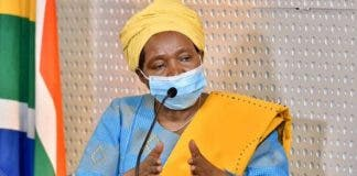 dlamini zuma attacks