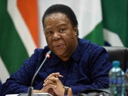 naledi pandor on south africans stranded abroad
