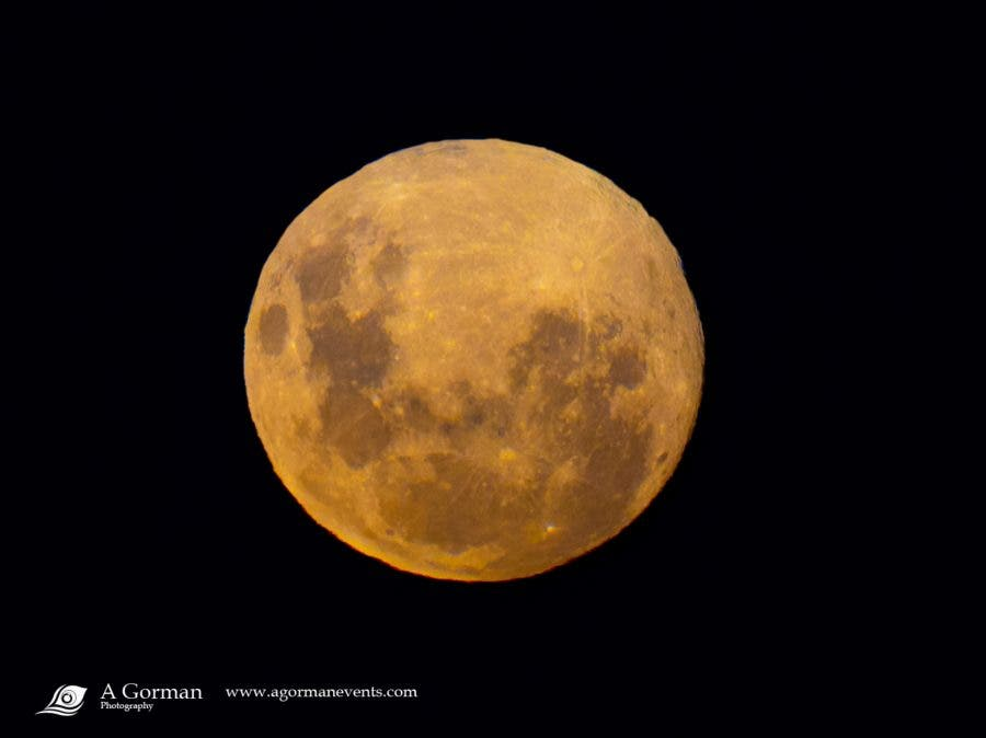 pink supermoon cape town
