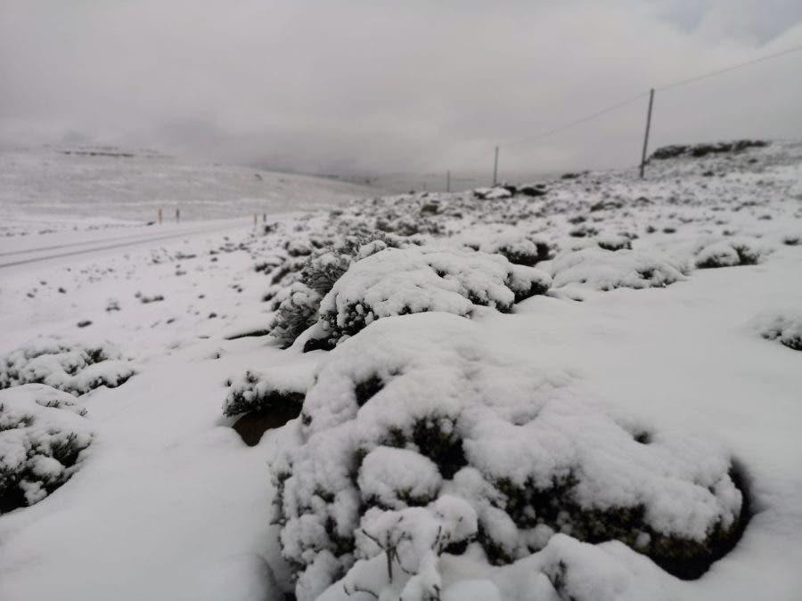 snow lesotho afriski