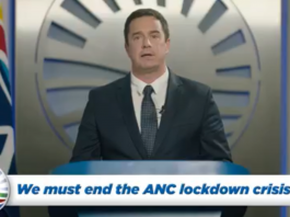 steenhuisen democratic alliance south africa