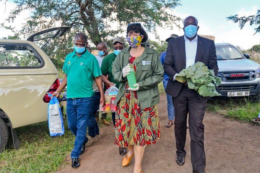 creecy minister south africa barabara