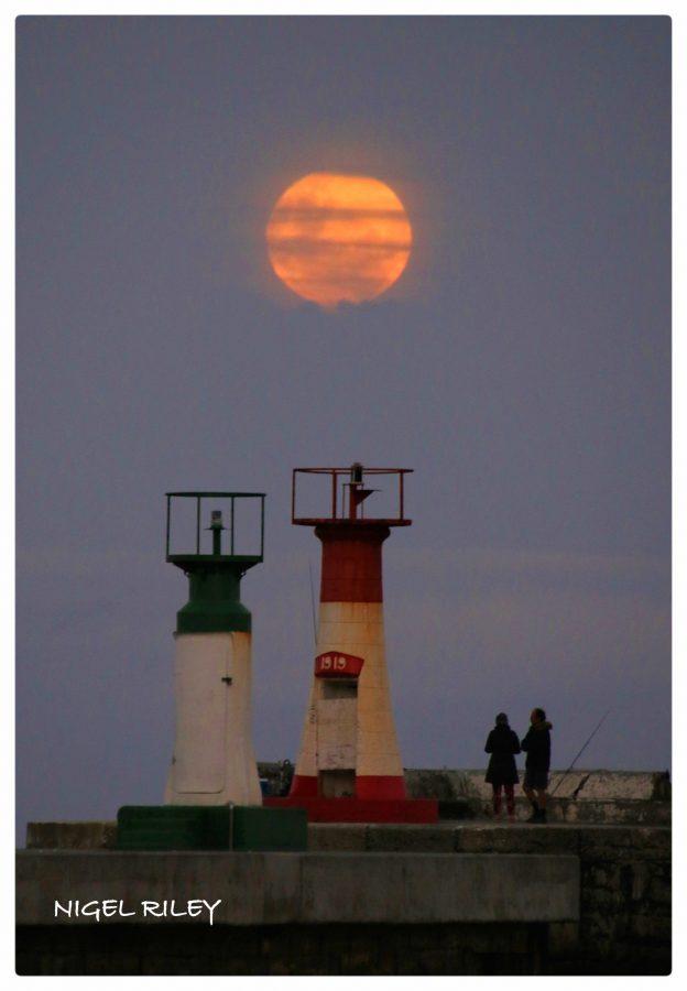 strawberry moon - photo #8