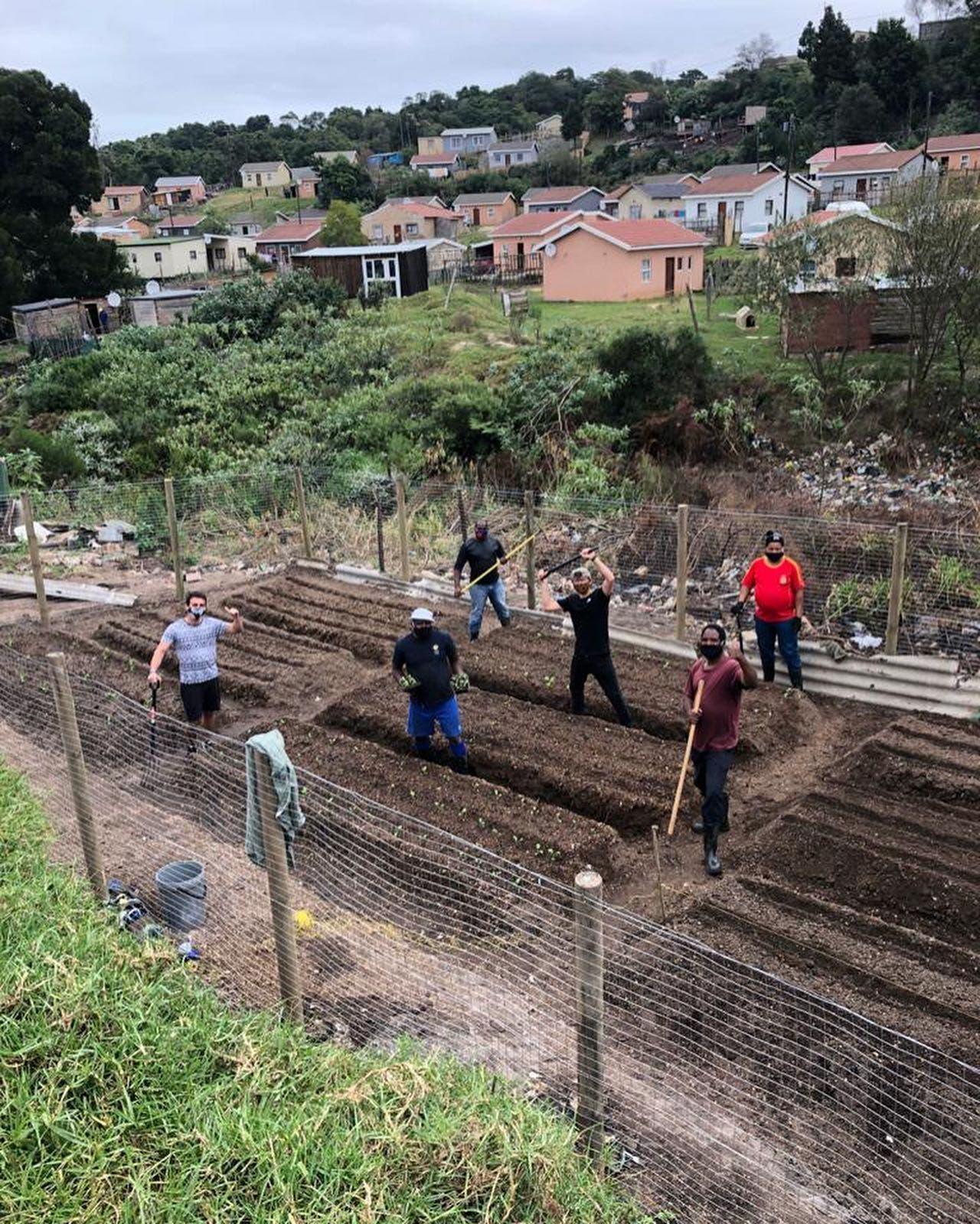 knysna vegetable garden garbage dump south africa