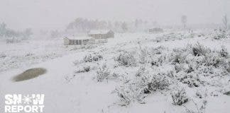 snow-report-south-africa