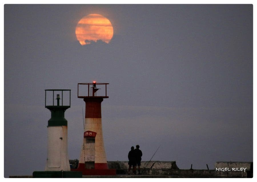 strawberry moon - photo #7