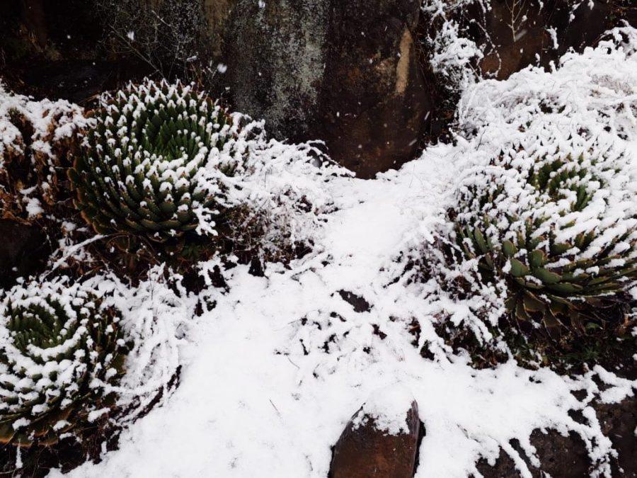 Semonkong Lodge, Lesotho, July, Snow