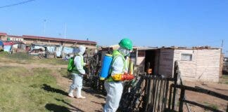 nelson mandela bay south africa covid sanitation