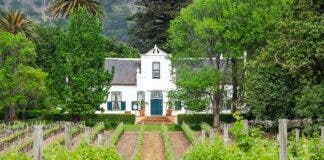 uk supermarket chain waitrose supports south african vineyard wine