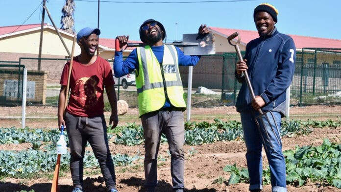 food garden during covid 19 south africa GU