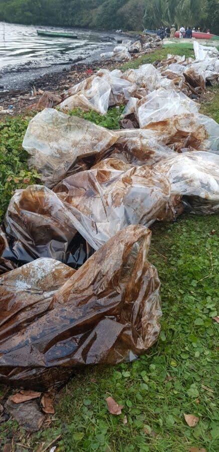 mauritius oil spill shore