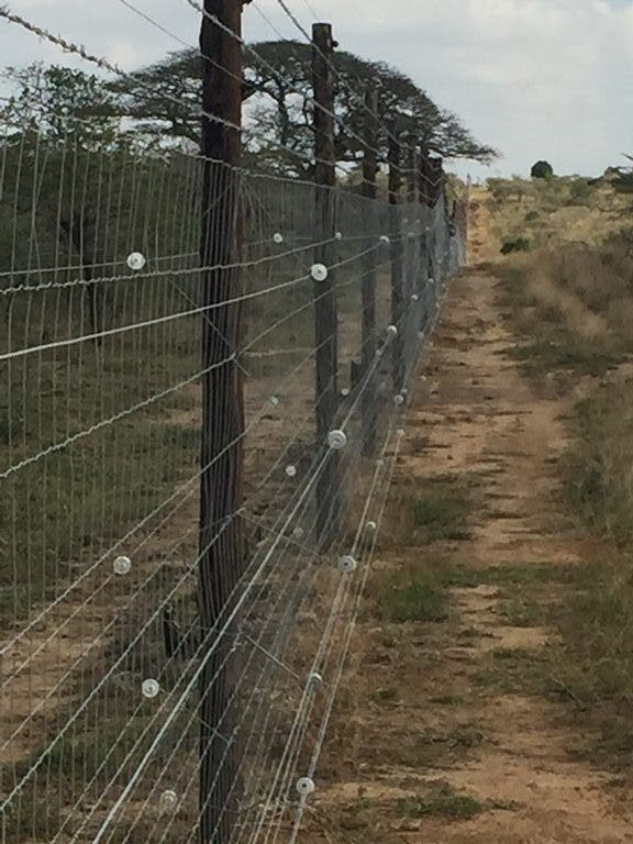 rhino detection fence kzn