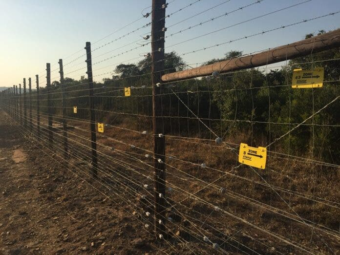 Detection Fence in KZN, released for World Rhino Day. Photos supplied