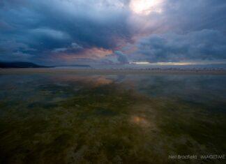 noordhoek wetlands cape town south africa