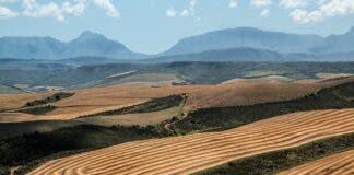 farm attacks south africa pix