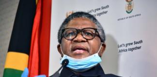 Transport Minister Fikile Mbalula travel south africa