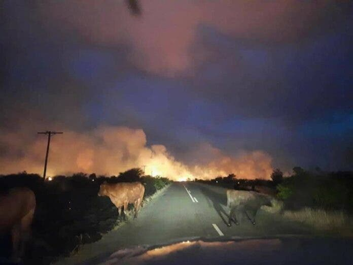 hertzogville fires free state
