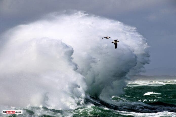 kalk bay harbour big waves sea