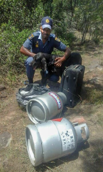 black k9 dog police unit south africa