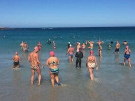polar bears cape town swimmers 3