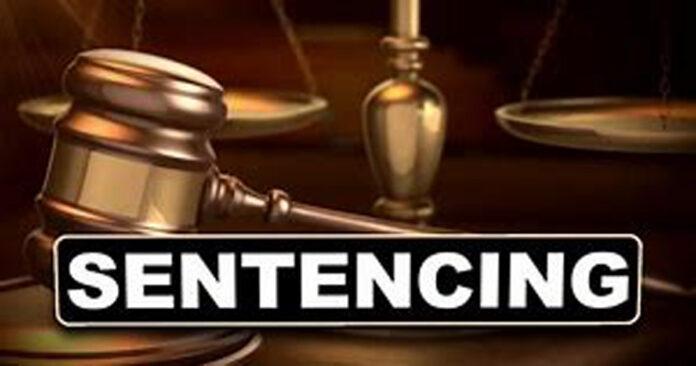 crusaders accused sentenced terrorism