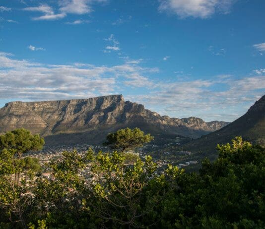 Table Mountain, Lions Head