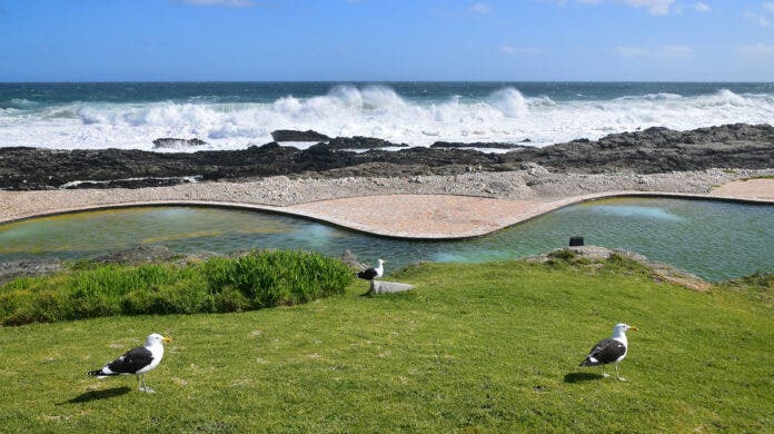 DA Goes to Court to Overturn Closure of Garden Route Beaches