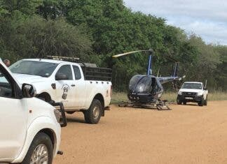 rhino poachers shoot out