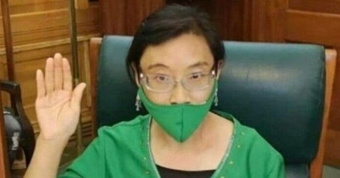 Xiaomei-Havard-Parliament-2
