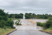 crocodile bridge closed kruger 2