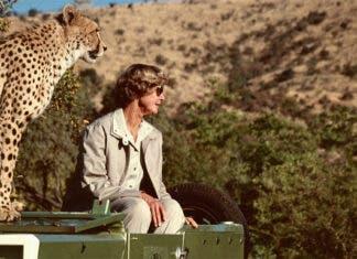 Renowned Cheetah Conservationist, Ann van Dyk, Dies