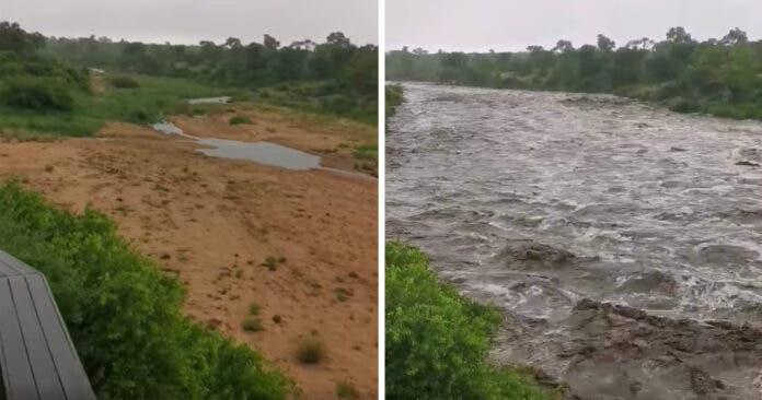 Biyamiti-River-Kruger-National-Park-flowing