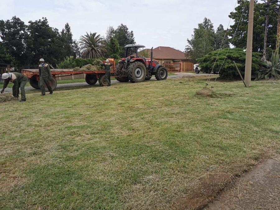 senekal gardens cleaned