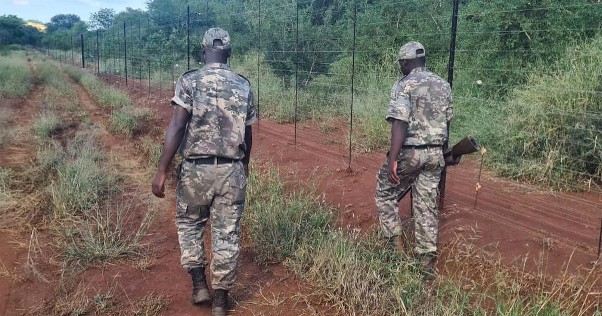 Team work leads to rhino poaching suspects arrest