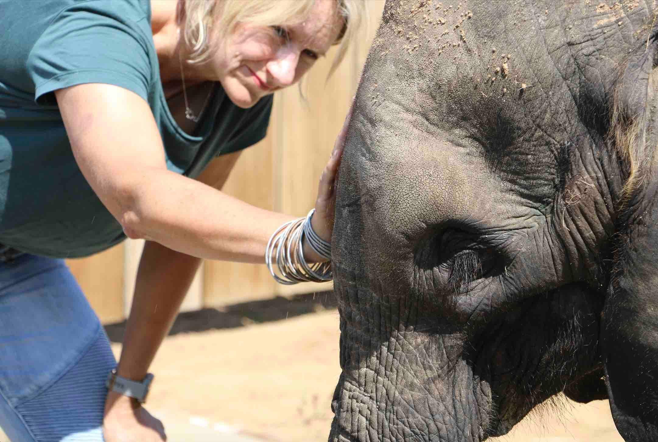 elephant orphan Fenya