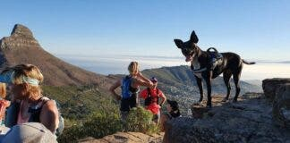 Bryony McCormick and Khaya, adopted dog Khayelitsha animal clinic