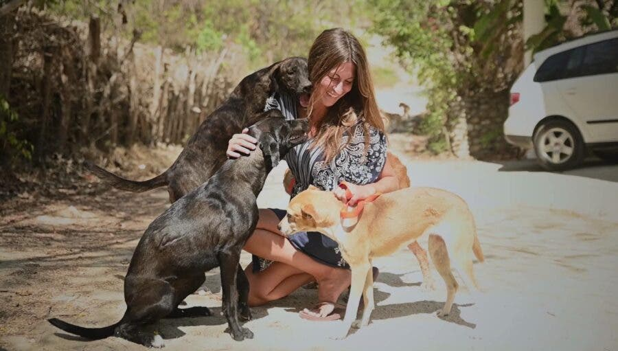 Claudia Mamet saving dogs in Mexico